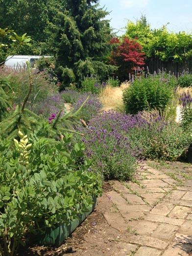 negy-evszak-kerteszet-siofok-bemutato-kert (15)