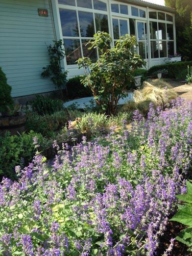 negy-evszak-kerteszet-siofok-bemutato-kert (26)