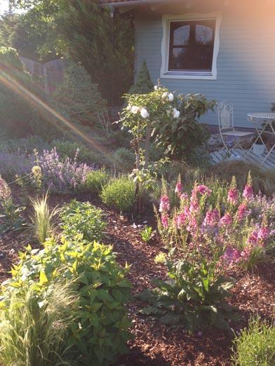negy-evszak-kerteszet-siofok-bemutato-kert (6)