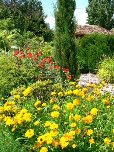 négy-évszak-kertészet-siófok-áruda- (1)