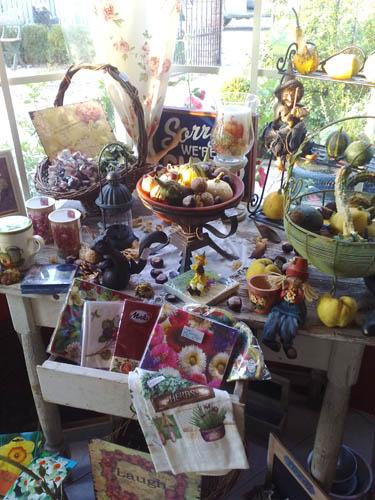 négy-évszak-kertészet-siófok-áruda- (17)