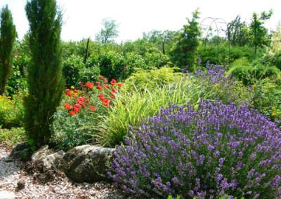 négy-évszak-kertészet-siófok-áruda- (2)