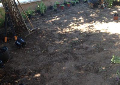 Ház előtti kiskert - Négy Évszak Kertészet Siófok (2)